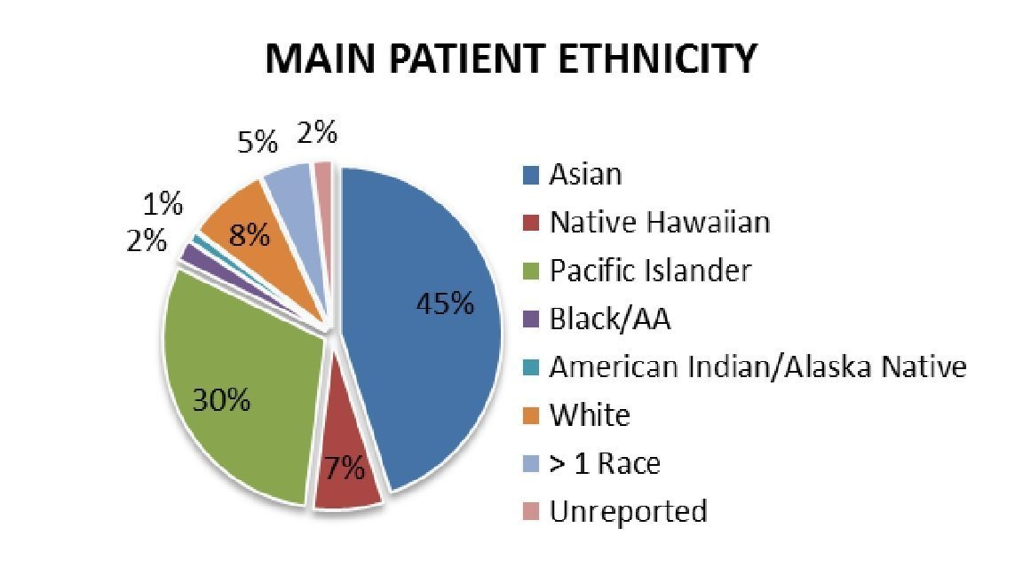 Patient Ethnicity 2014
